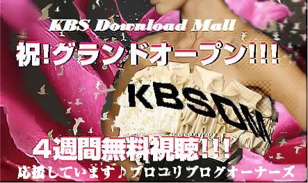 『KBSDM』
